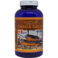 CHAGA GOLD